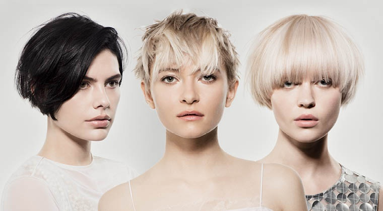 SASSOON COLLECTIONS